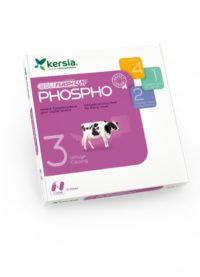 Boliflash-phospo